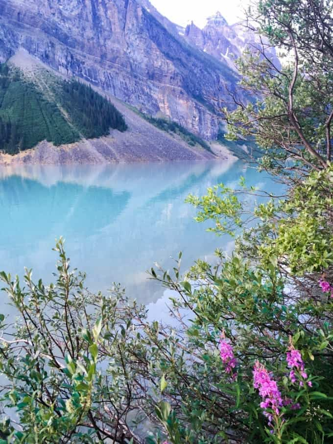 Cool blue waters of Lake Louise in Banff National Park, Alberta with colorful vegetation.