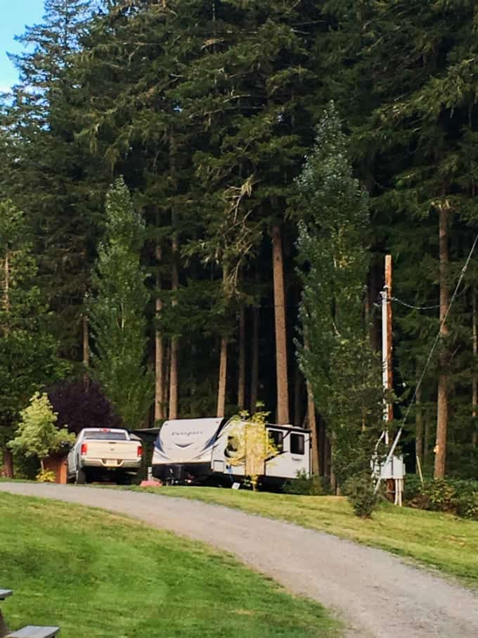 Crater Lake National Park and nearby Umpqua National Forest are natural wonders that deserve weeks of exploration. Here is our RV site surrounded by towering pines.