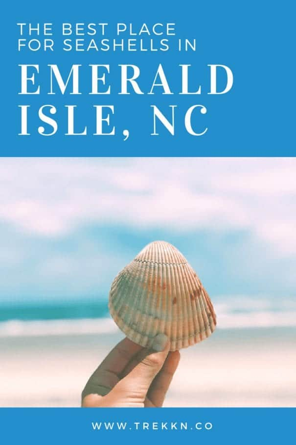 Emerald Isle Beaches - this is the best beach to find seashells hands down!