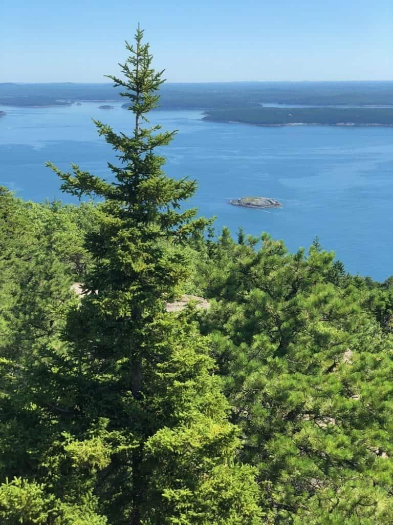 From the top of the Precipice Trail, you can get the view of a lifetime out over the park and even the town of Bar Harbor.