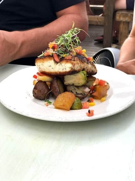 Halibut at The Blue Mussel Cafe in PEI