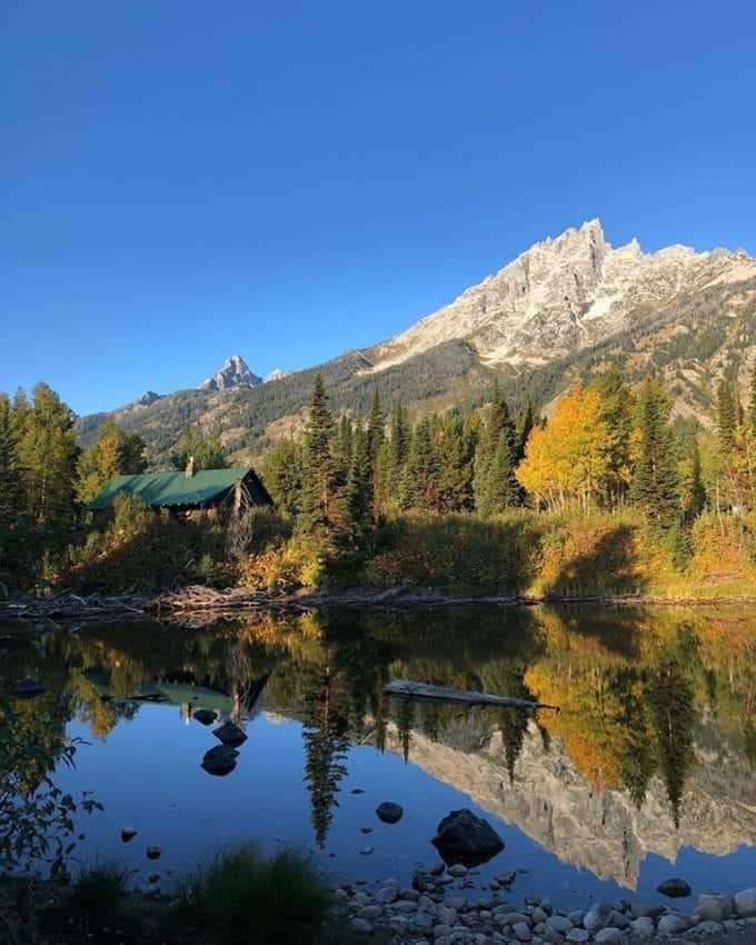Fall foliage in Grand Teton National Park