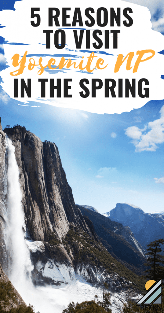 Yosemite National Park in the spring