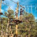 Treehouse adventure park in bailey colorado