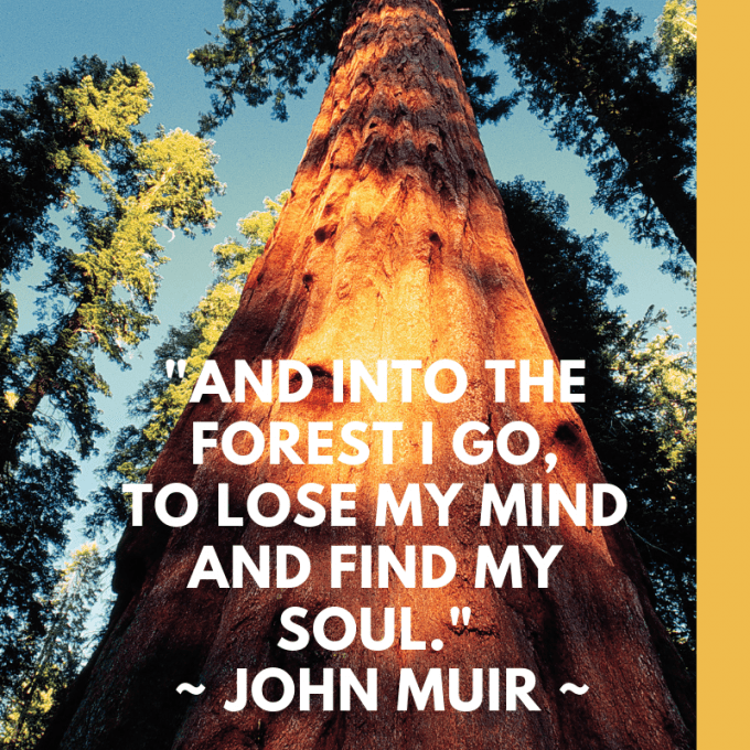 Mondays with Muir: Meet John of the Mountains