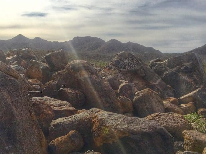 How to spend the weekend in Saguaro National Park