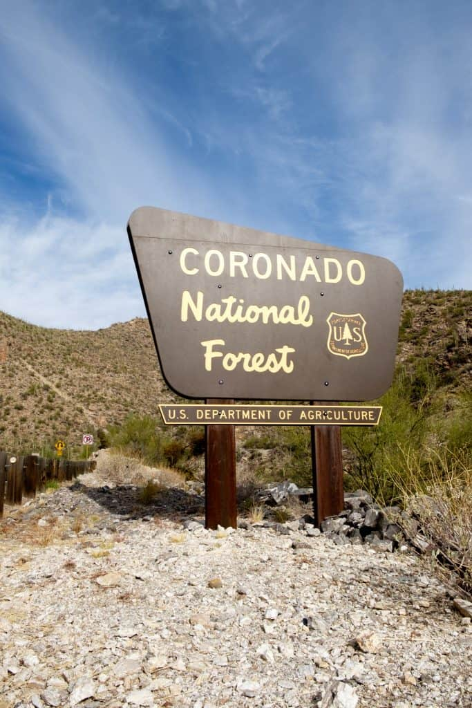 Coronado National Forest in Arizona