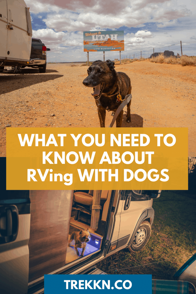 RV travel with dogs