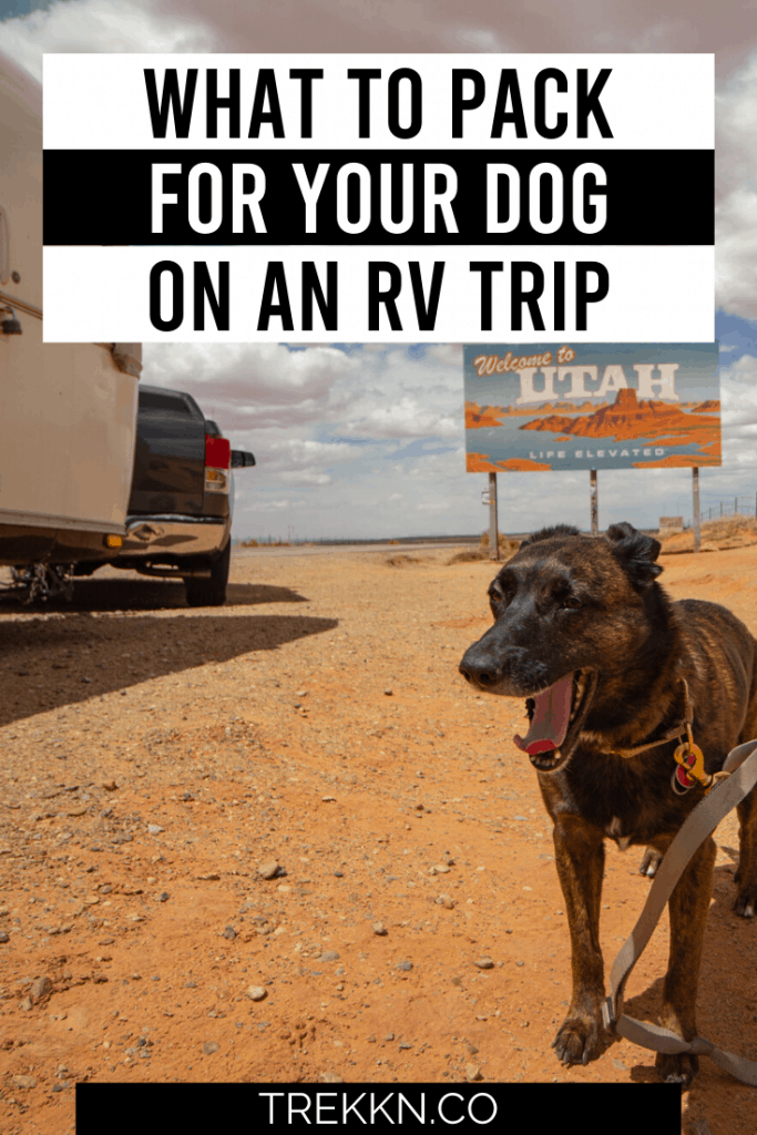 Taking an RV trip with your dog