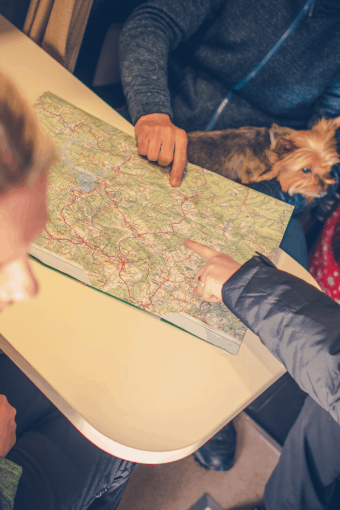 how to safely rv with dogs