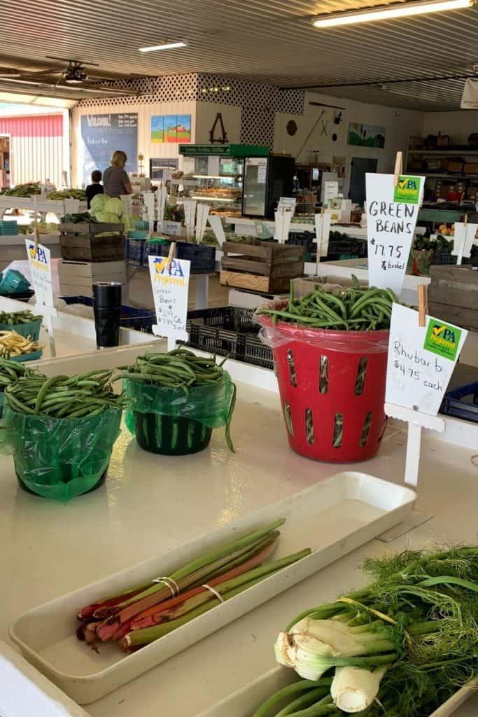 Hershey PA farm tour