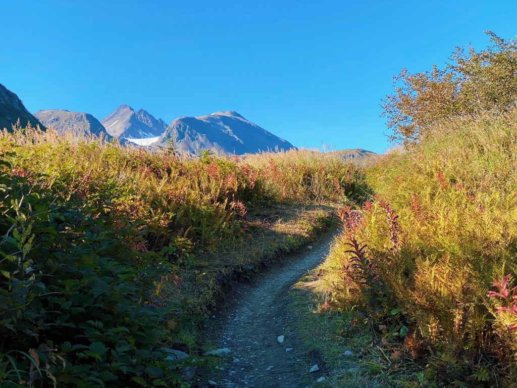 lost lake trail in early autumn