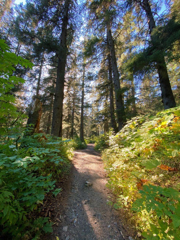 mt marathon hikers trail