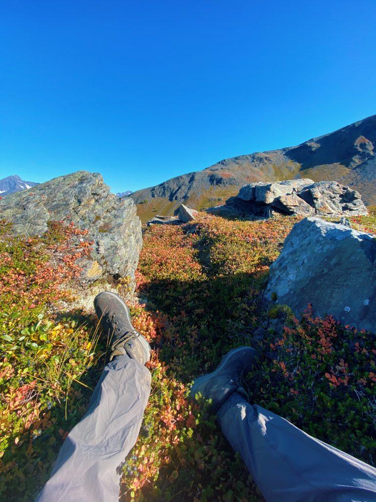 tranquil spot on hiking trail in seward