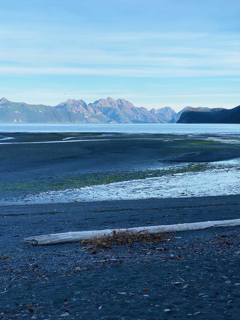 a beach in seward alaska