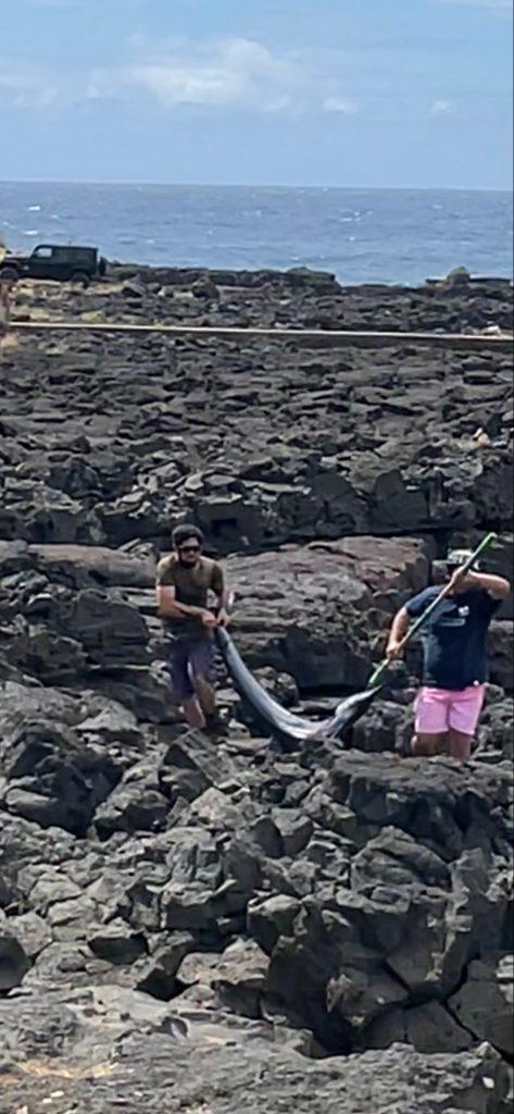 catching fish south point big island hawaii