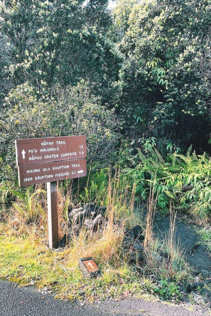 hawaii volcanoes national park hikes